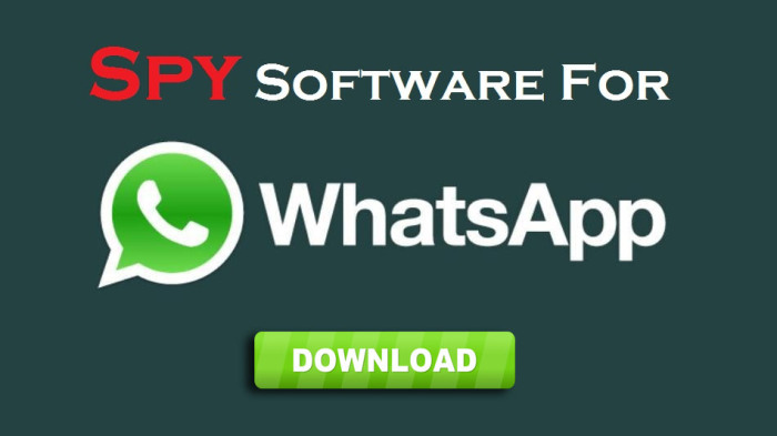 spy a whatsapp account